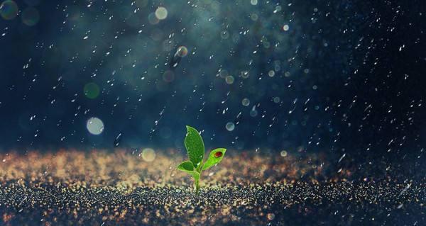 2015年夏日的第一场雨