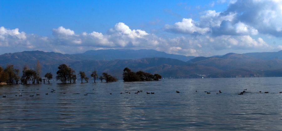 洱海边的古生村