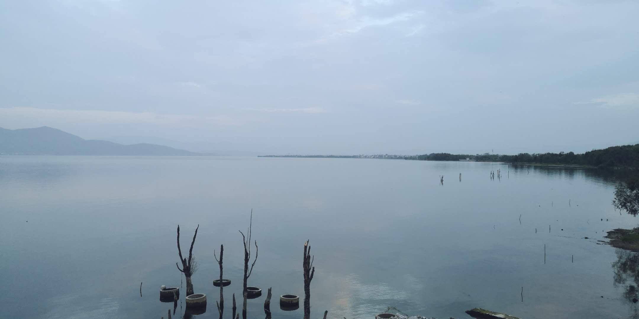 洱海环海路夏日风景