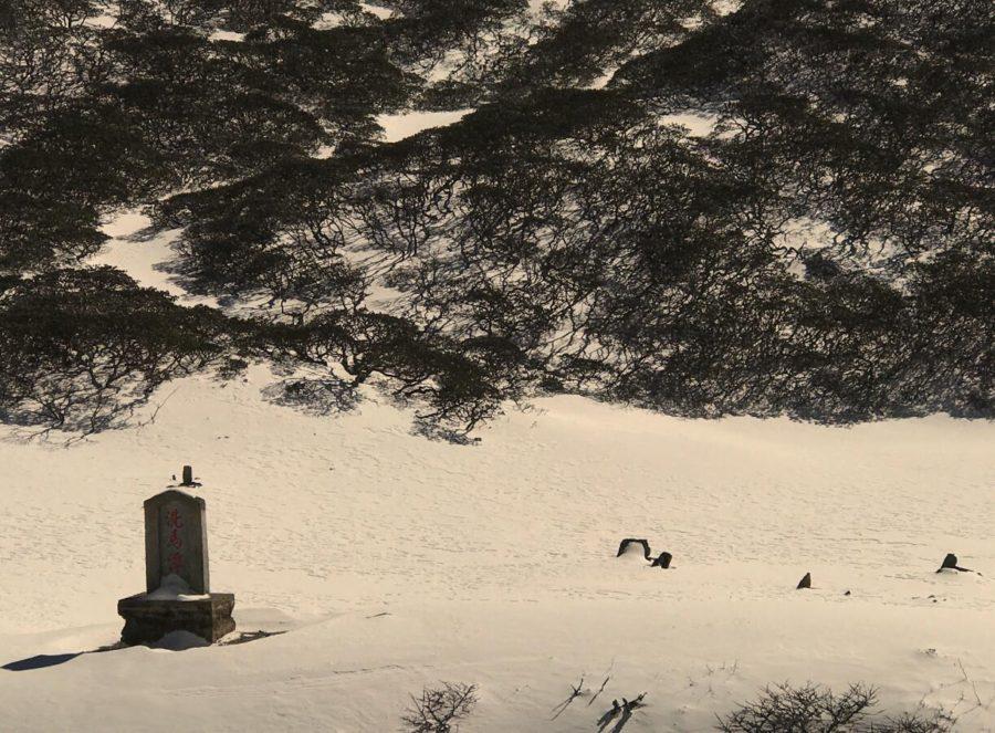 洗马潭上苍山雪