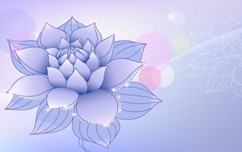 心,是盛开的莲