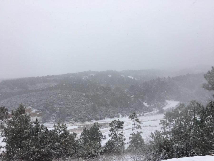 罗坪山上的雪