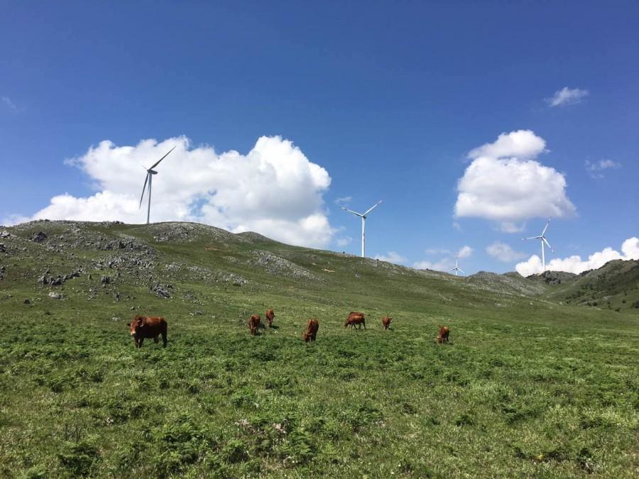 宾川乌龙坝:山麓里的阳光与青草