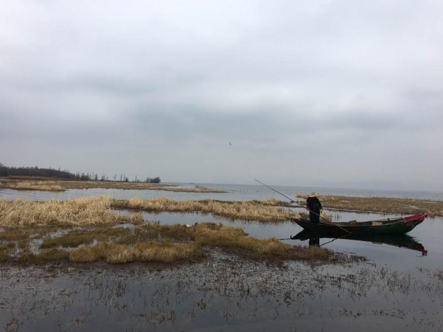 冬天的洱海边